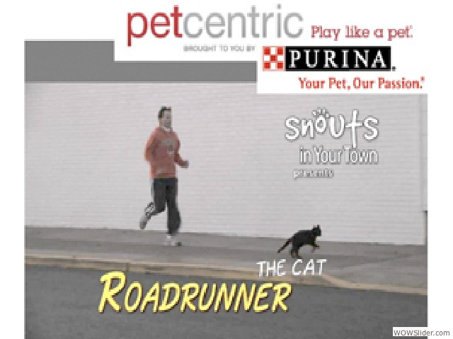 slide17_purina